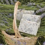 Lavender-Kuyucak